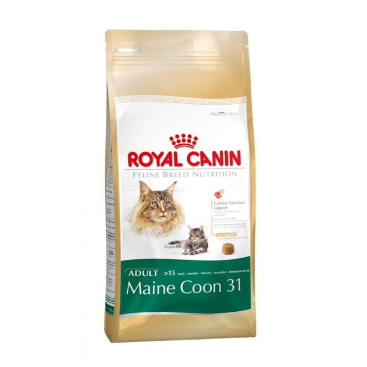 Royal Canin Maine Coon 31 Complete Cat Food 2kg