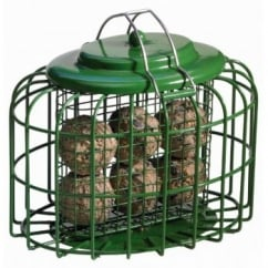 The Nuttery Wild Bird Oval Fatball Feeder.
