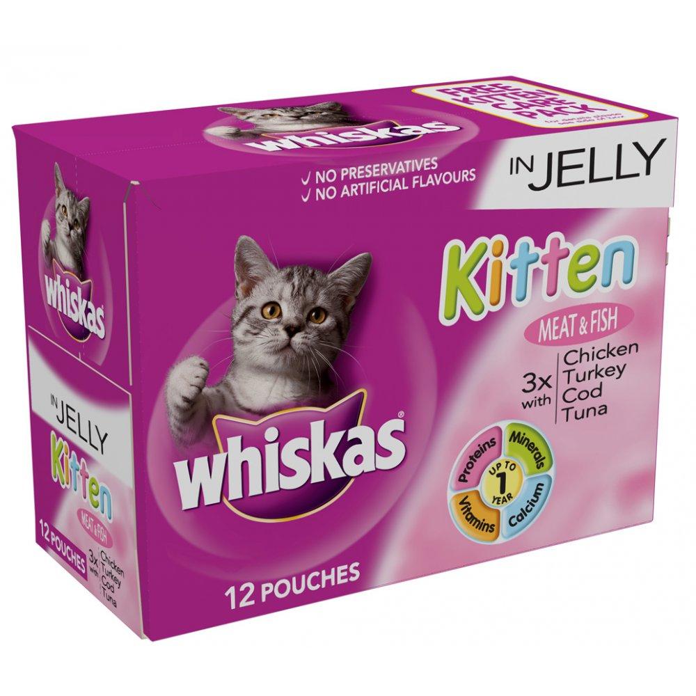 cat dewormer pill