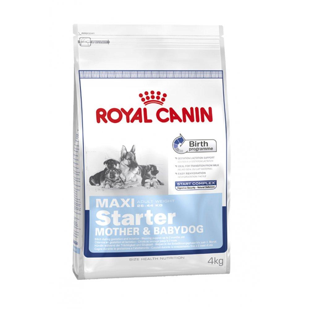 royal canin maxi starter mother baby dog food 4kg feedem. Black Bedroom Furniture Sets. Home Design Ideas