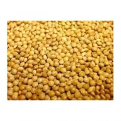 Willsbridge White Millet Bird Seed 20kg