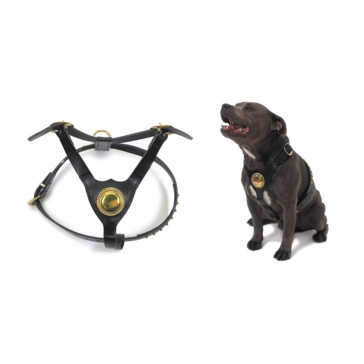 Ancol Leather Deluxe Bull Terrier Harness Black 60cm-83cm