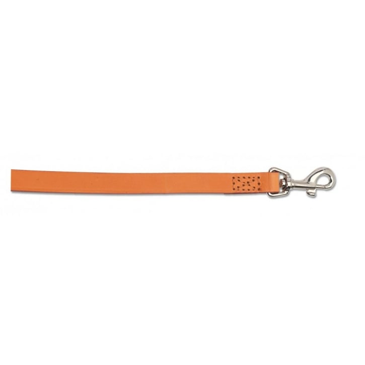 Ancol Leather Dog Lead
