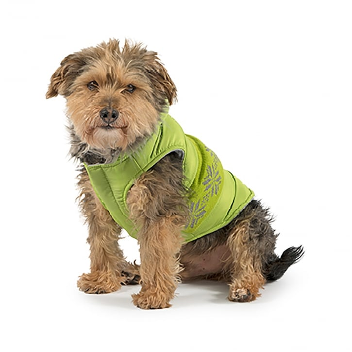 Ancol Muddy Paws Nordic Dog Coat Green Small