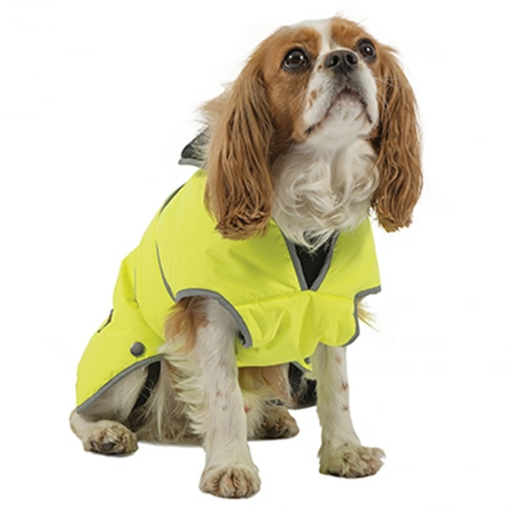 Ancol Muddy Paws Stormguard Hi-Vis Dog Coat Extra Small