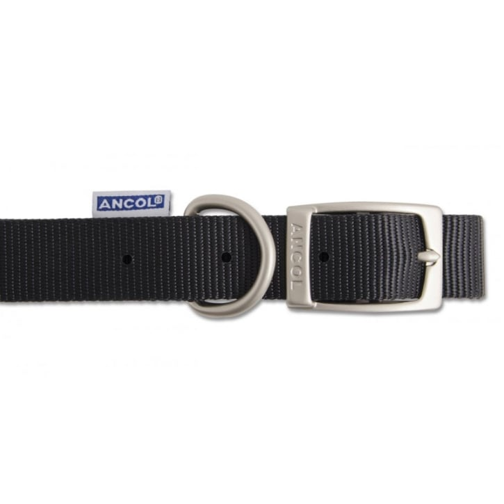 Ancol Nylon Dog Collar Eyeletted