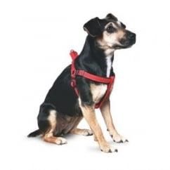 Nylon Dog Padded Harness- Extra Small - Red