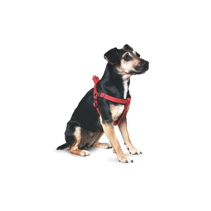Ancol Nylon Dog Padded Harness - Large - Black