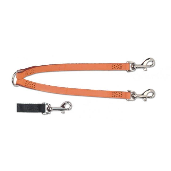 Ancol Sewn Nylon Dog Couples Lead