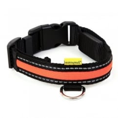 Animate Walking Mate Soft Nylon LED Flashing Orange Dog Collar - Medium