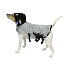 Goodboy Halloween Spider Dog Costume Large