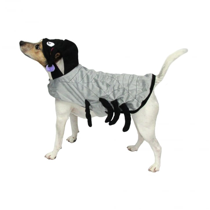 Goodboy Halloween Spider Dog Costume Medium  sc 1 st  Feedem & Armitage Goodboy Halloween Spider Dog Costume Medium | Feedem