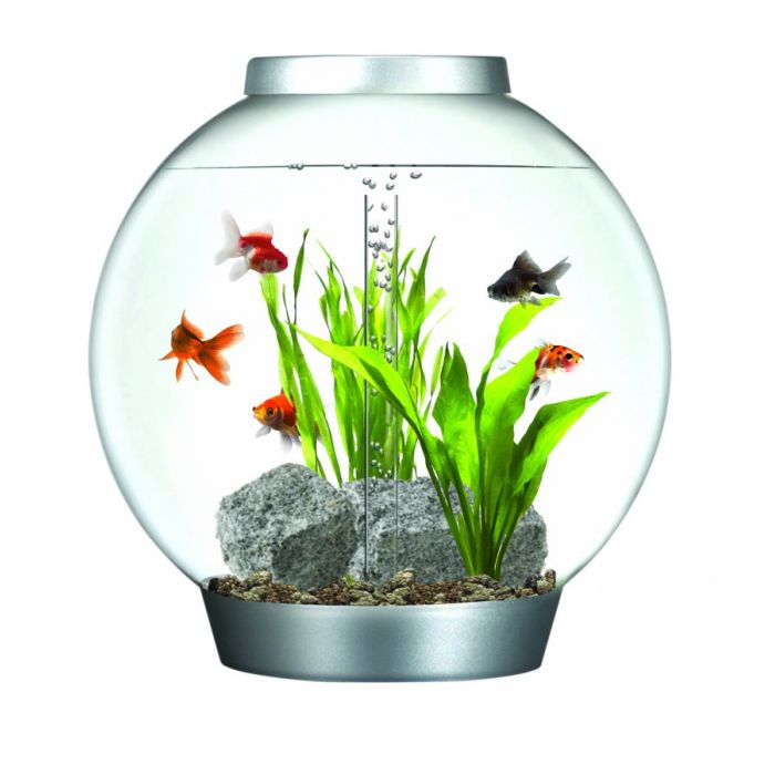 reef one 60 litre biorb aquarium kit with halogen light feedem. Black Bedroom Furniture Sets. Home Design Ideas