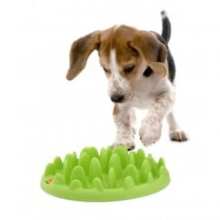 Green Interactive Slow Feeder - Mini