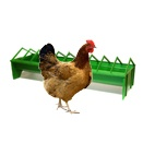 Poultry Feeders & Drinkers