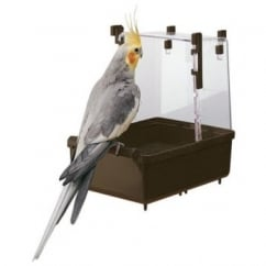 Cockatiel Plastic Bird Bath