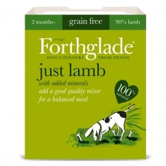 Forthglade Grain Free Just Lamb With Added Minerals 395g