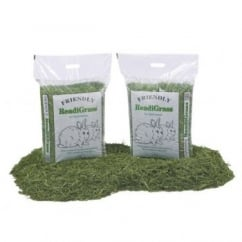 Friendship Estates Friendly Readigrass for Small Animals 1kg