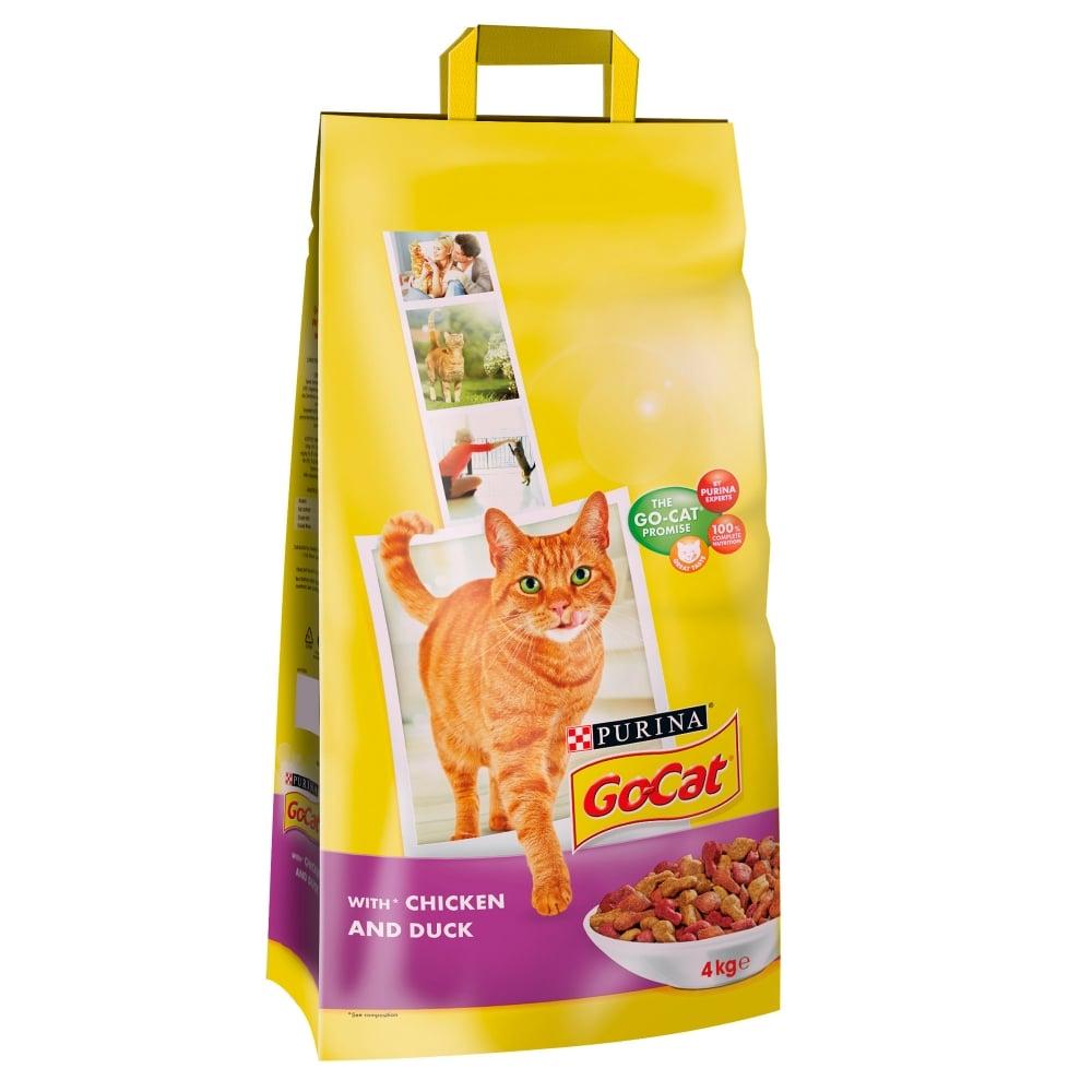 singapura cat rescue