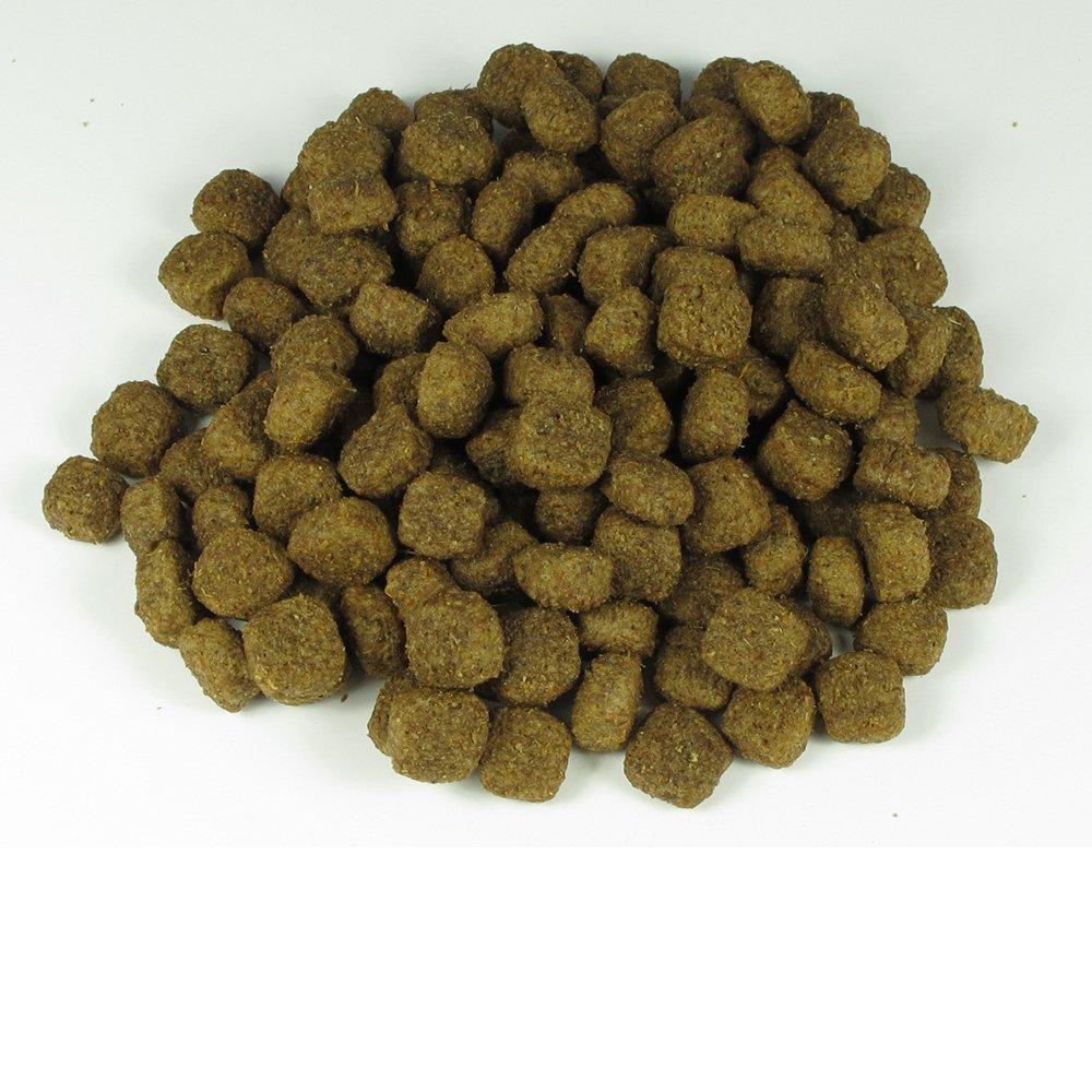 Gusto Mature Dog Food