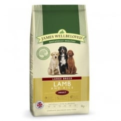 Large Breed Adult Lamb & Rice Dog Food 4kg