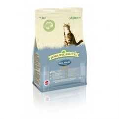 James Wellbeloved Oral Health Turkey Cat Food 300g