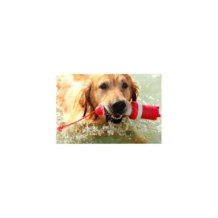 Kruuse Rogz Lighthouse Dog Retrieve Toy