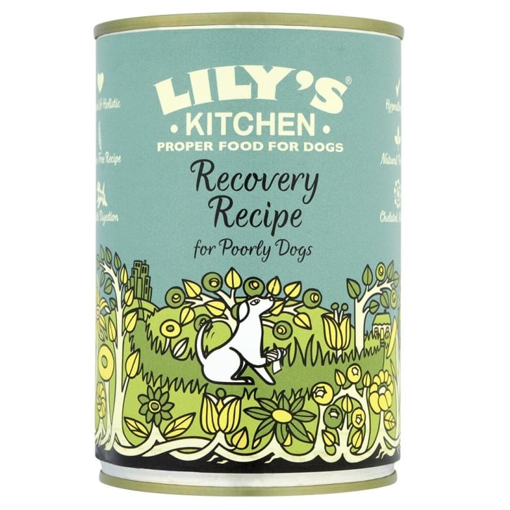 Lily's Kitchen Recovery Recipe Wet Dog Food 400g