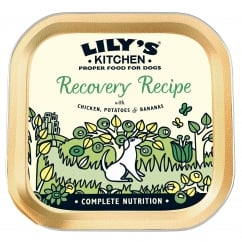 Recovery Recipe With Chicken, Potatoes & Bananas Wet Dog Food 150g