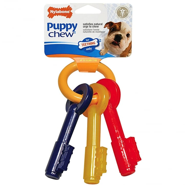 Nylabone Puppy Teething Keys Dog Chew - Small