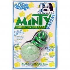 Minty Fresh Rubber Studded Ball with Rope Medium