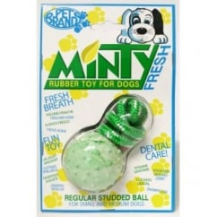 Pet Brands Minty Fresh Rubber Studded Ball with Rope - Medium