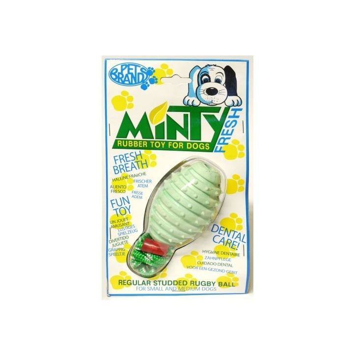 Pet Brands Minty Fresh Rubber Studded Rugby Ball with Rope Dog Toy - Medium