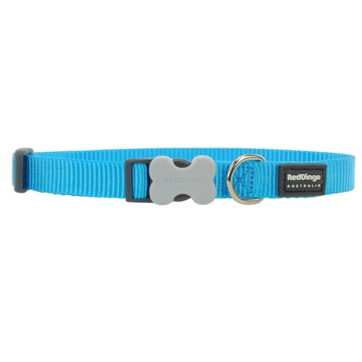 Red Dingo Classic Turquoise Plain Nylon Dog Collar - Small