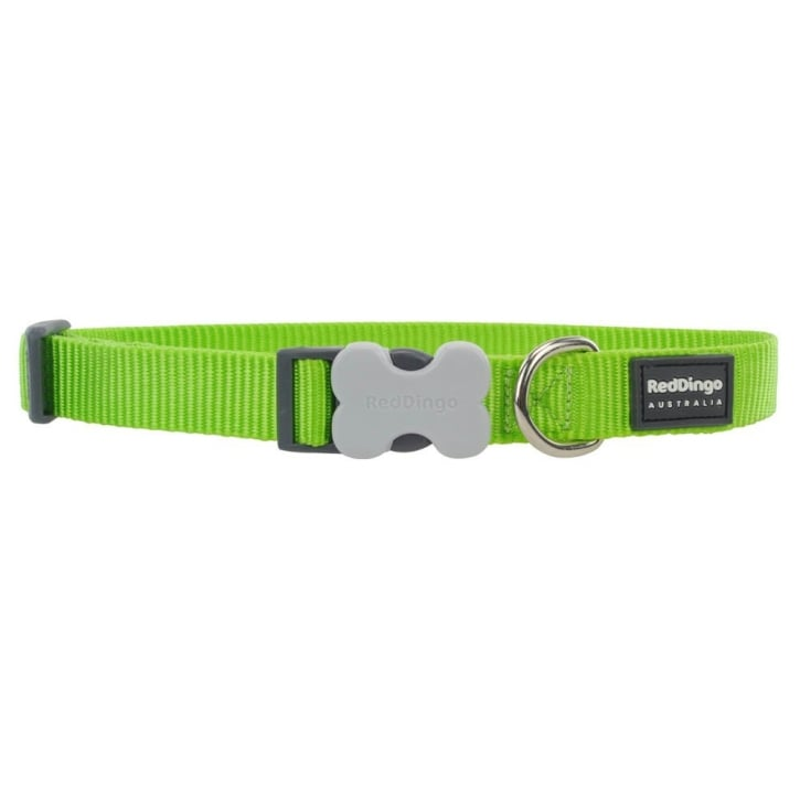 Red Dingo Classic Plain Nylon Dog Collar Lime Green - Large