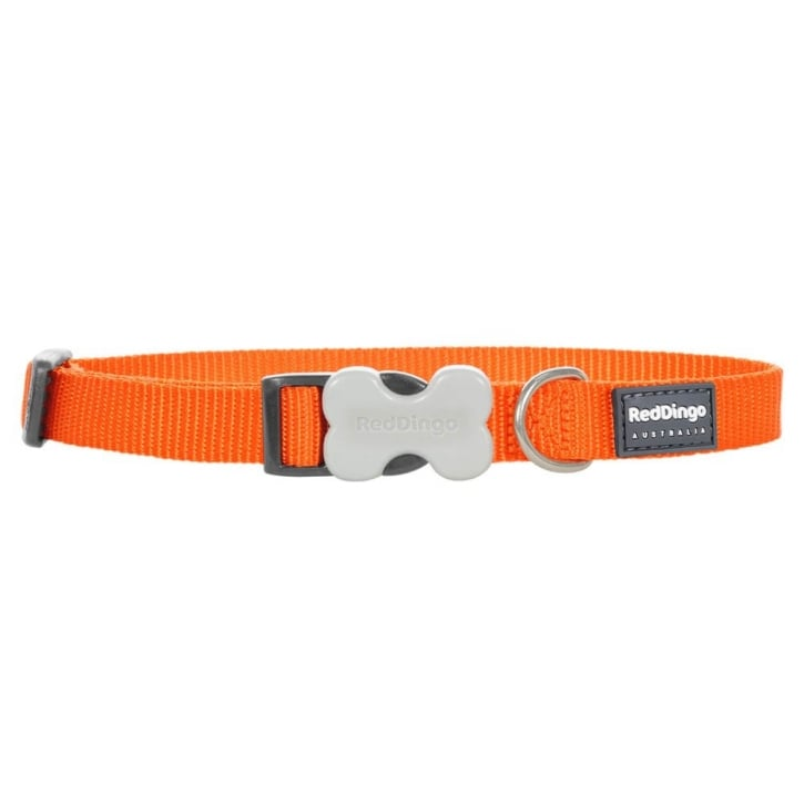 Red Dingo Classic Plain Nylon Dog Collar Orange - Medium