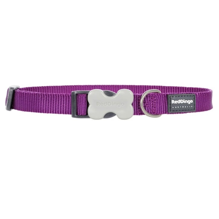 Red Dingo Classic Plain Nylon Dog Collar Purple - Medium