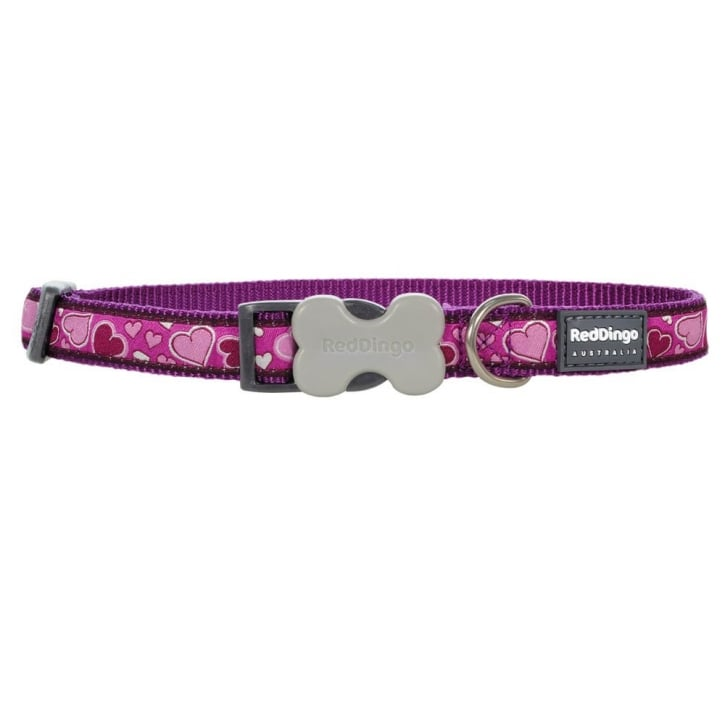 Red Dingo Patterned Nylon Breezy Love Purple Dog Collar - Medium