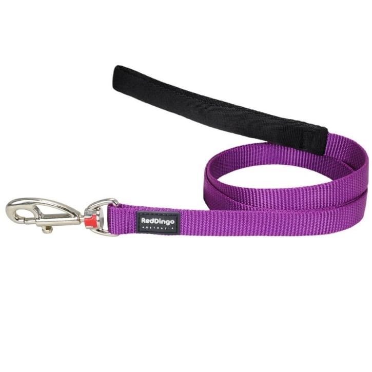 Red Dingo Plain Classic Nylon Purple Dog Lead 12mm x 1.2m Small