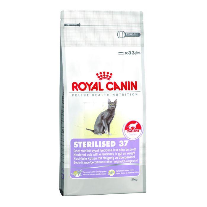 buy royal canin sterilized 37 cat food 10kg. Black Bedroom Furniture Sets. Home Design Ideas