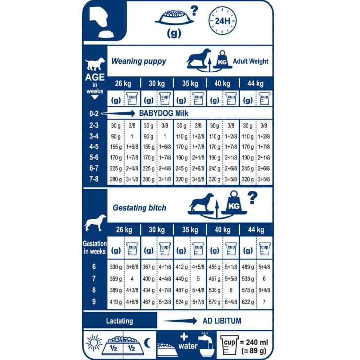 royal canin dog food feeding guide