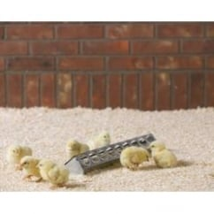 Savic Rose Chick Zinc Plated Trough Feeder 38x8x6.5cm