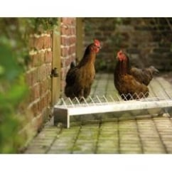 Savic Violet Poultry Zinc Plated Trough Feeder 78x13x16cm