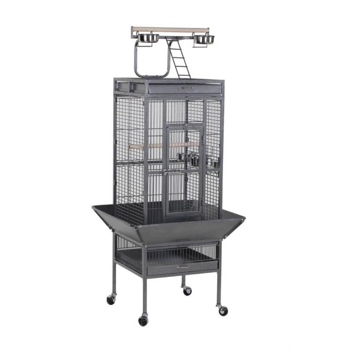 Sky Pet Products Victoria Parrot Play Top Cage | Feedem