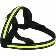 Animate Walking Mate Soft Nylon LED Flashing Green Dog Harness - Medium