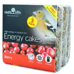 Winston Wilds Wild Bird Berry Energy Cake 3 x 325g