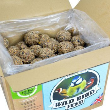 how to make fat balls for the birds