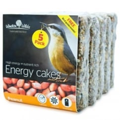 Winston Wilds Wild Bird Peanut Energy Cake 5 x 325g