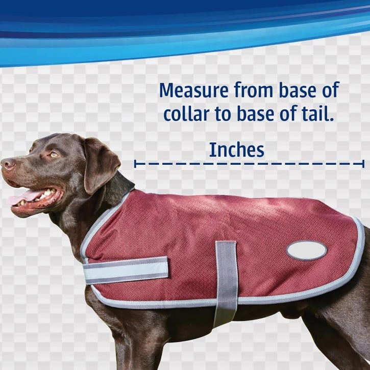 Outhwaite Woven Polyester Waterproof Dog Coat Padded Lining Feedem